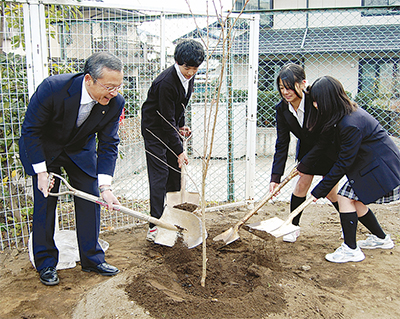 大根中学校に被爆桜を植樹