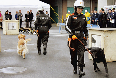 救助犬と初の合同訓練