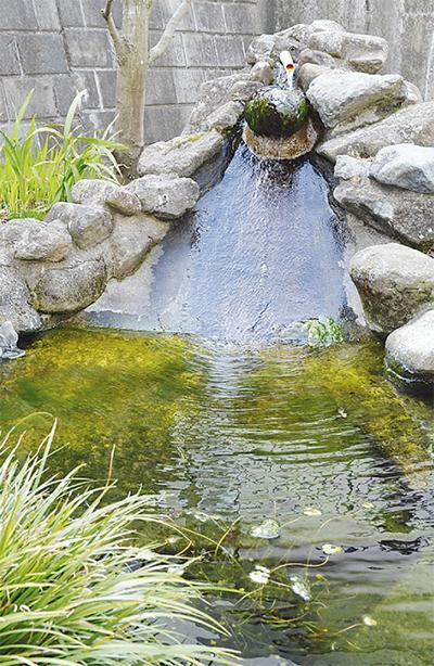 南幼稚園湧水は「飲料適合」