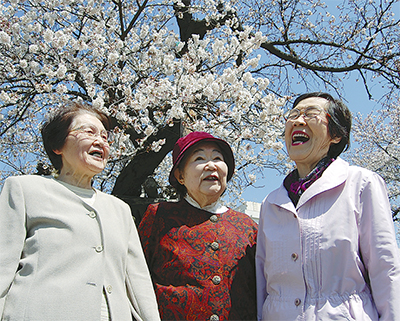 桜の下で60年ぶりの再会