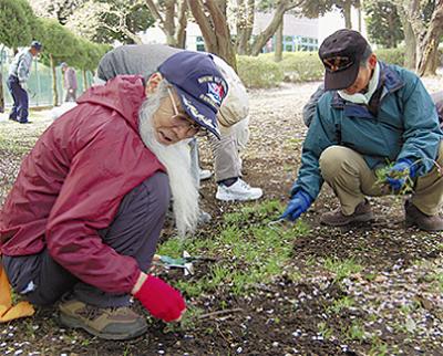 老人クラブが公園清掃