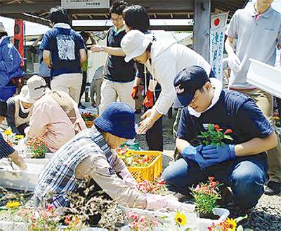 被災地で花植え
