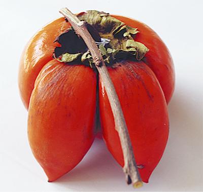 角が生えた柿
