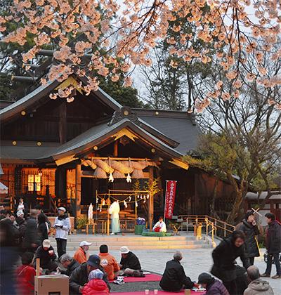 夜桜で地域の絆深める