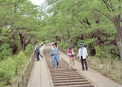 弘法山公園の階段を清掃