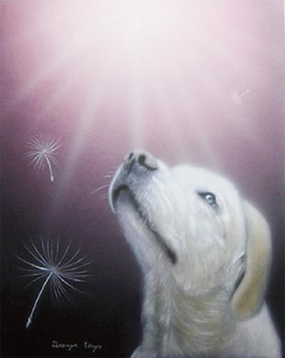 動物に捧げる祈り