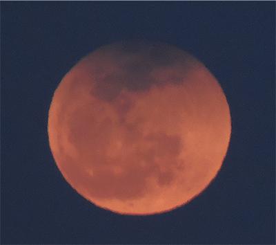 月出帯食撮った