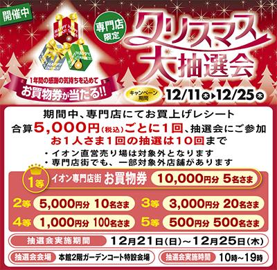 イオン専門店のクリスマス大抽選会