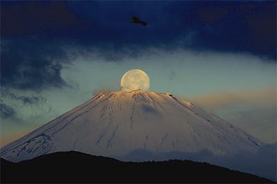 今年初のパール富士