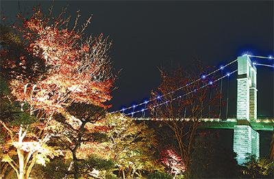 茶室と橋をライトアップ