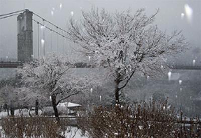 秋冬の情景 写真展