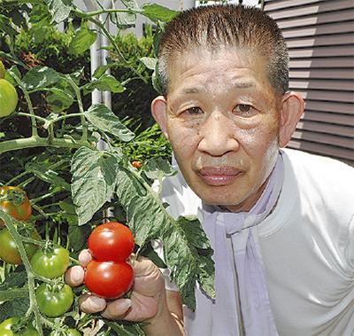 トマト版鏡餅
